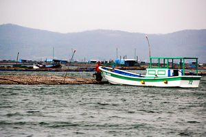 'Thủ phủ' thủy sản Sông Cầu báo động trước cơn bão số 6