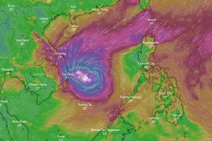 Hoãn hủy hàng loạt chuyến bay do bão số 6