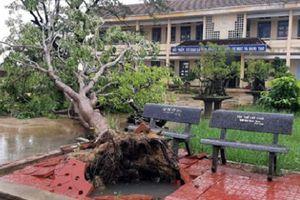 Hơn 1 triệu học sinh nghỉ học để tránh bão số 6