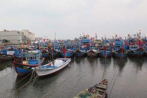 Gần 4.000 ngư dân Quảng Ngãi còn ở ngoài biển khi bão số 6 áp sát đất liền