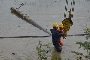 40.000 khách hàng đã được cấp điện trở lại sau bão số 6