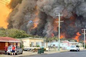 Australia: Hai bang miền Đông ban bố tình trạng khẩn cấp đề phòng thảm họa cháy rừng