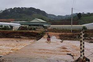 Lâm Đồng: Một người bị lũ cuốn mất tích