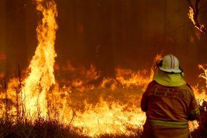 Australia đặt mức cảnh báo cao nhất vì cháy rừng diện rộng