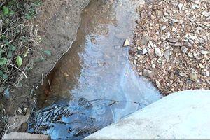 Làm rõ vụ tràn dầu thải đầu nguồn sông Hiếu
