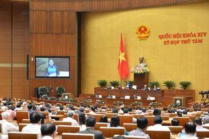 Bộ trưởng, Chủ tịch tỉnh có nên là đại biểu Quốc hội?