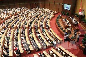 Tuần này, Quốc hội thông qua nhiều luật và nghị quyết quan trọng