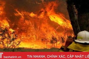 120 đám cháy rừng bùng phát, Australia ban bố tình trạng khẩn cấp