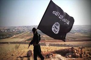 Thổ Nhĩ Kỳ bắt đầu hồi hương các chiến binh IS