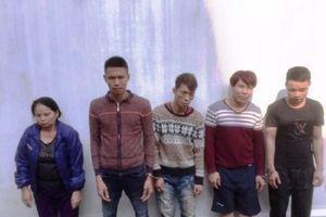 Lộ diện nữ 'đạo chích' U70 cầm đầu đường dây trộm chó liên huyện ở Thanh Hóa