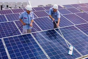 Đa dạng hóa đầu tư truyền tải điện