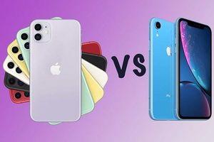 Những khác biệt giữa iPhone 11 với iPhone Xr, có nên nâng cấp?