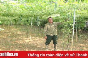 Hiệu quả phong trào nông dân thi đua sản xuất, kinh doanh giỏi ở xã Thiệu Dương
