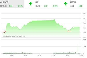 Phiên chiều 12/11: VNM 'ngáng chân', thị trường vẫn tăng điểm