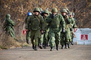 Lãnh đạo Nga, Đức thảo luận về tình hình miền đông Ukraine
