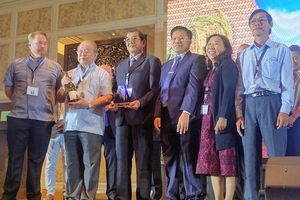Vượt qua Thái Lan, Việt Nam nhận giải Gạo ngon nhất thế giới năm 2019
