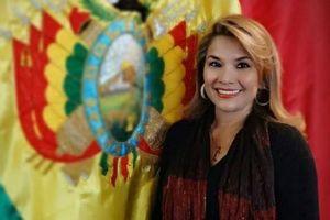 Phó Chủ tịch Thượng viện Bolivia tuyên bố thành Tổng thống lâm thời