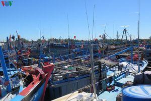 Nhiều tàu cá ở Quảng Ngãi bị kẹt trong âu tàu sau bão số 6