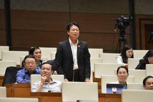 HĐND phường ở Hà Nội hiệu quả thấp do không được trao quyền?