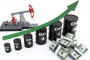 Giá xăng dầu hôm nay 14/11 đồng loạt tăng mạnh