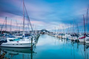 New Zealand tháng 11: Một bước đến mùa xuân cổ tích