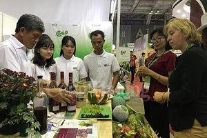 Dự án VCED hỗ trợ hợp tác xã Việt Nam phát triển thị trường qua Vietnam Foodexpo 2019