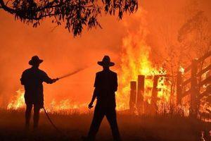 Giới chuyên gia chỉ ra nguyên nhân gây cháy rừng thảm khốc ở Australia