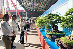 Khai mạc Lễ hội Bonsai & Suiseki châu Á - Thái Bình Dương