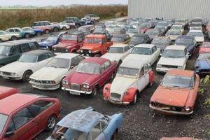 135 chiếc xe ô tô tịch thu từ tội phạm được bán đấu giá rẻ đến bất ngờ