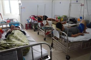 Dịch sốt xuất huyết tại Đà Nẵng diễn biến phức tạp