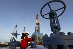 IEA: OPEC+ sẽ đối mặt thách thức lớn khi nhu cầu dầu thô giảm