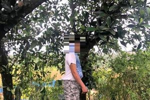 Hai trẻ nghi bị cha sát hại ở Vũng Tàu: Thông tin mới nhất