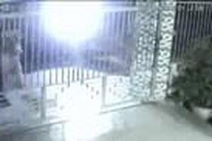 Trộm đập chết chó trong 5 giây