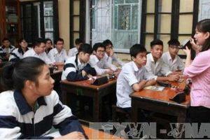 Hà Nội tạm dừng thi để tuyển dụng đặc cách giáo viên hợp đồng