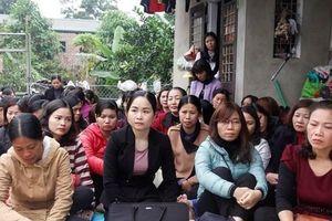Chủ tịch UBND TP Hà Nội chỉ đạo dừng thi để xét tuyển đặc cách giáo viên hợp đồng