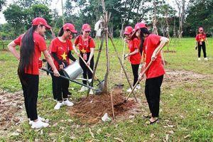 Hành trình 'Tôi yêu Tổ quốc tôi' trồng hàng nghìn cây xanh tại Nghệ An