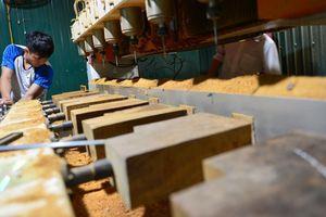 Gian lận thương mại, rủi ro lớn cho ngành gỗ Việt