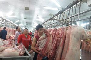 Liệu thịt lợn có tiếp tục lên 'cơn sốt' giá?