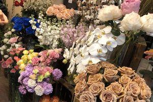 Mua hoa cả chục triệu đồng tặng thầy cô ngày 20/11
