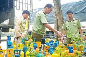 Quảng Bình: Phát hiện xe tải vận chuyển hơn 1,5 tấn khí cười