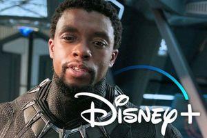 Chadwick Boseman không muốn Black Panther xuất hiện trong loạt phim MCU trên Disney +!