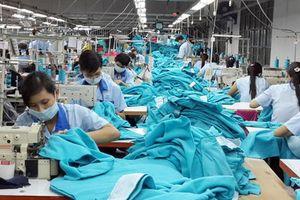 Cổ phiếu lao dốc, Garmex Sài Gòn (GMC) chuẩn bị chào bán gần 9 triệu cổ phiếu ra công chúng