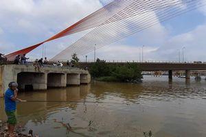 Nước sông Hàn nhiễm Coliform gấp 8 lần quy chuẩn