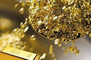 Giá vàng hôm nay 20/11: Chờ đón tin tốt, giá vàng bật tăng mạnh mẽ