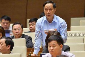 ĐBQH Nguyễn Mai Bộ: Có lãnh đạo Bộ gây sức ép với đại biểu QH phát biểu trái quan điểm ngành