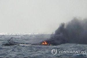 Khẩn trương tìm kiếm công dân Việt Nam gặp nạn trên biển tại Hàn Quốc