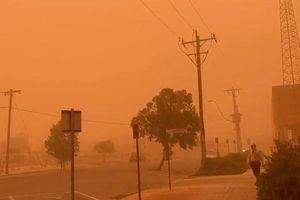 Bão bụi màu cam sẫm như 'ngày tận thế' ở Úc