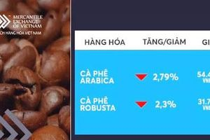 Giá cà phê đồng loạt giảm