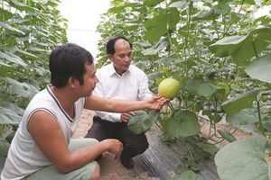 Xây dựng nông thôn mới gắn liền nâng cao đời sống nhân dân