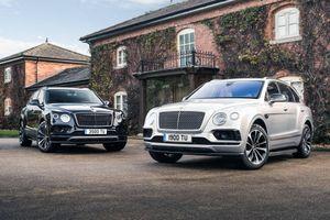 Bentley Bentayga có thêm phiên bản 4 chỗ, tùy chọn dành cho ông chủ